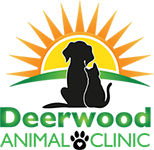 Veterinarians in Jacksonville | Deerwood Animal Clinic